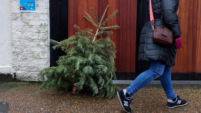A woman walks past a discarded Christmas tree in a residential street  in Fulham
