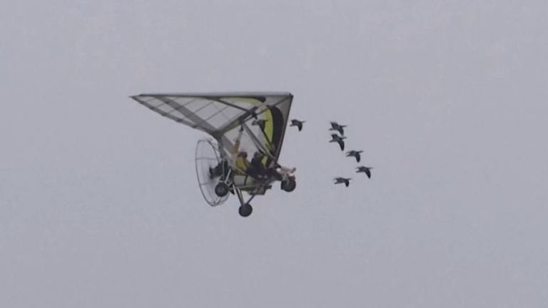 Woman with degenerative eye condition achieves ambition of flying with geese