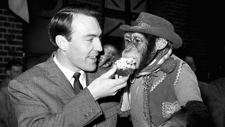 Jimmy Greaves shares a slice of cake with Linda the chimpanzee at the PDSA sanatorium, Ilford, in December 1964