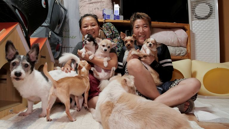 Kim Gea-yeung (R), manager of an animal shelter for abandoned dogs and cats, and Kim Young-suk sit with abandoned dogs at an animal shelter in Anseong, South Korea