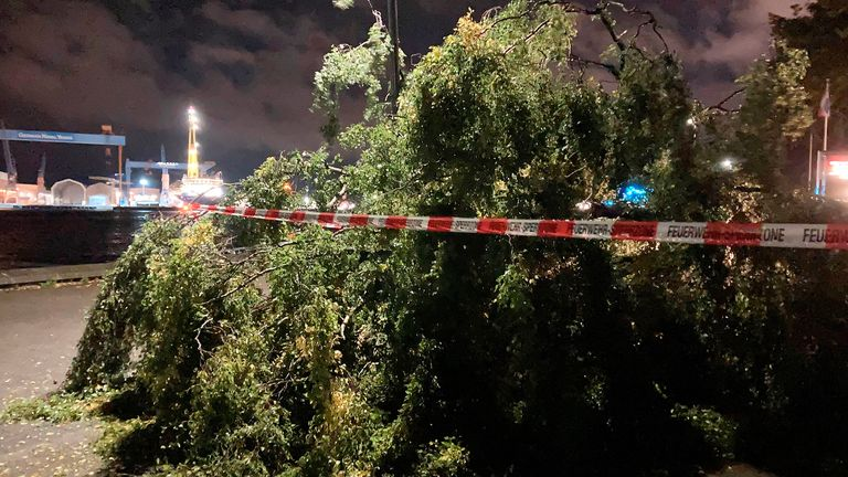 Germany tornado - 29 September 2021, Schleswig-Holstein, Kiel: A fallen tree lies on the street. According to the police, a tornado whirled several people through the air and washed them into the water in Kiel early Wednesday evening. Photo by: Wolfgang Schmidt/picture-alliance/dpa/AP Images PICAP