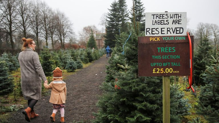A woman walks with a child at Walton Christmas Trees Centre and Plant Nursery amid the outbreak of the coronavirus disease (COVID-19) in Warrington, Britain,