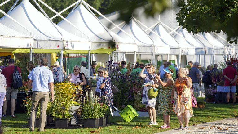 آب و هوا - HS Garden Wisley Flower Show افتتاحیه RHS Garden Wisley Flower Show در ووکینگ.  تاریخ تصویر: سه شنبه 7 سپتامبر 2021.