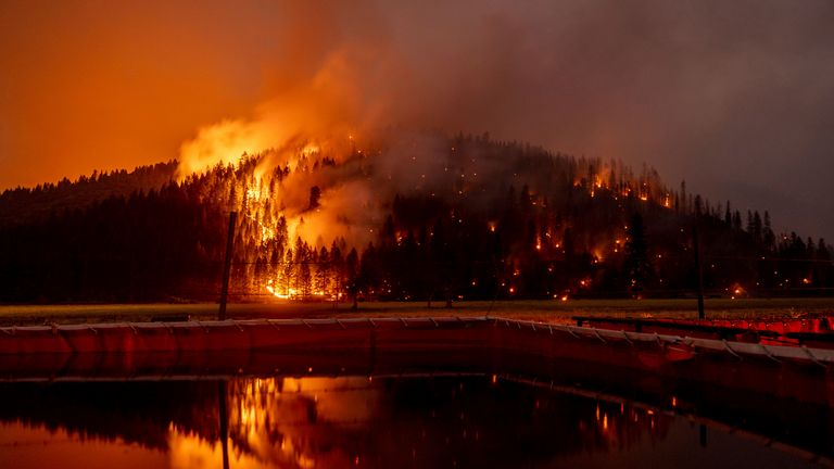 Wildfires in California have destroyed thousands of acres this year Pic: AP