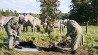 Queen Elizabeth II and Prince of Wales plant a tree at Balmoral Cricket Pavilion to mark the start of the official planting season for the Queen's Green Canopy (QGC) at the Balmoral Estate. Picture date: Friday October 1, 2021.