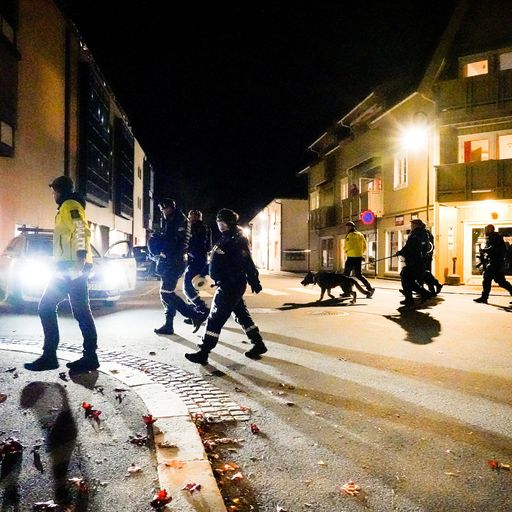 'A death cry that burned into the soul': Norway bow and arrow killings witnesses describe horror