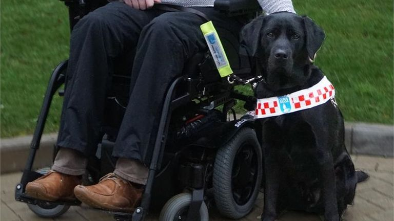 """Angus the guide dog was left """"bruised and subdued"""" after being kicked"""