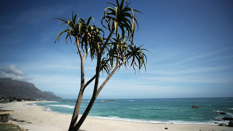 An aloe stands over Camps Bay beach, normally popular with foreign tourists, in Cape Town, South Africa