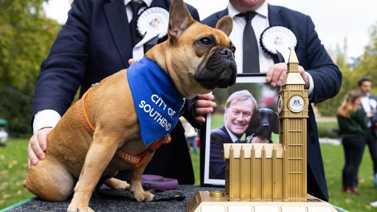 Sir David Amess' French Bulldog Vivienne is announced as the winner of the Westminster Dog of the Year competition, organised jointly by Dogs Trust and The Kennel Club, London. Picture date: Thursday October 28, 2021.