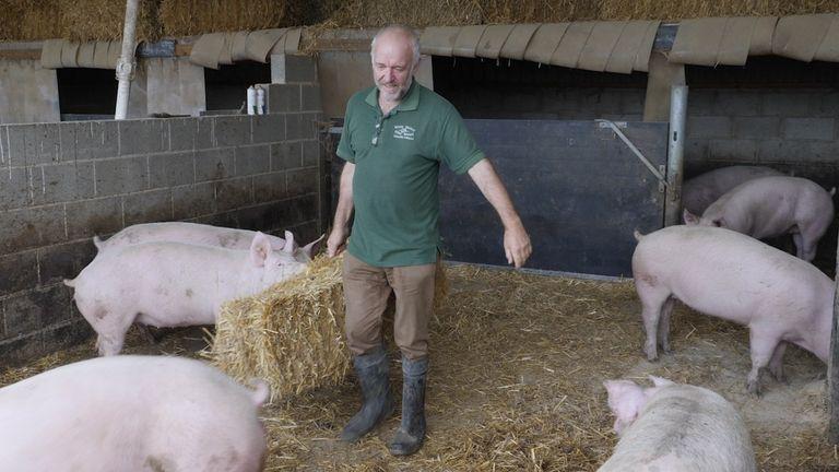 Stephen Thompson keeps 2,000 pigs at Povey Farm in Norton, Derbyshire