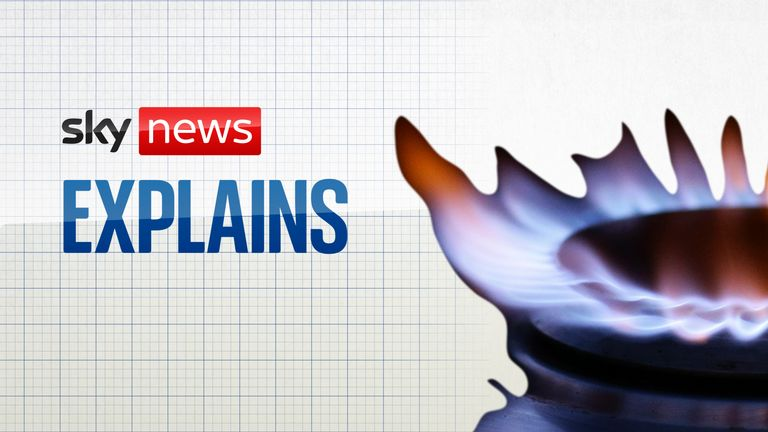 Sky News Explains: Could carbon capture save our planet?