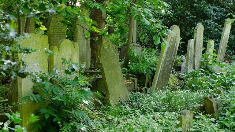 Tower Hamlets Cemetery Park stock photo. Pic: iStock