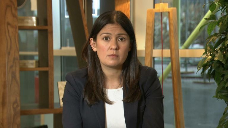 Shadow Foreign Secretary Lisa Nandy says she was accosted outside parliament during a Brexit rally.