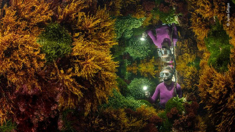 Rich reflections by Justin Gilligan, from Australia, is the winner in the Plants and Fungi category of the Wildlife Photographer Of The Year 2021 competition. Pic: Justin Gilligan/ Wildlife Photographer Of The Year